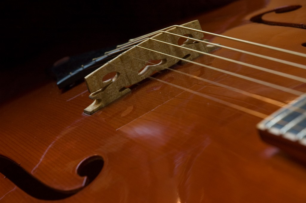 The Koentopp Amati Archtop hand cut bridge