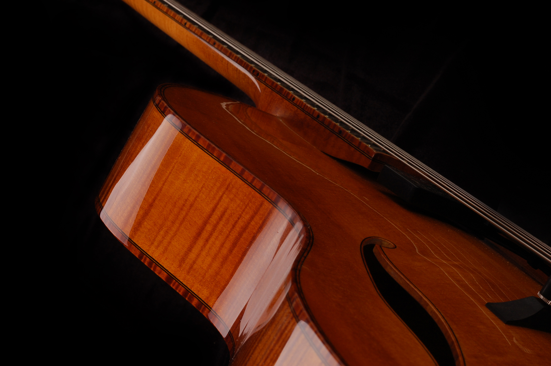 Upper bout and maple neck